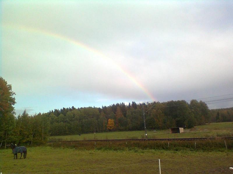 regnb.jpg